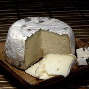 Accords mets et vins pour le fromage