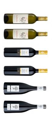 Carton dégustation spécial repas de Noël : 6 bouteilles d'exception vins Provence